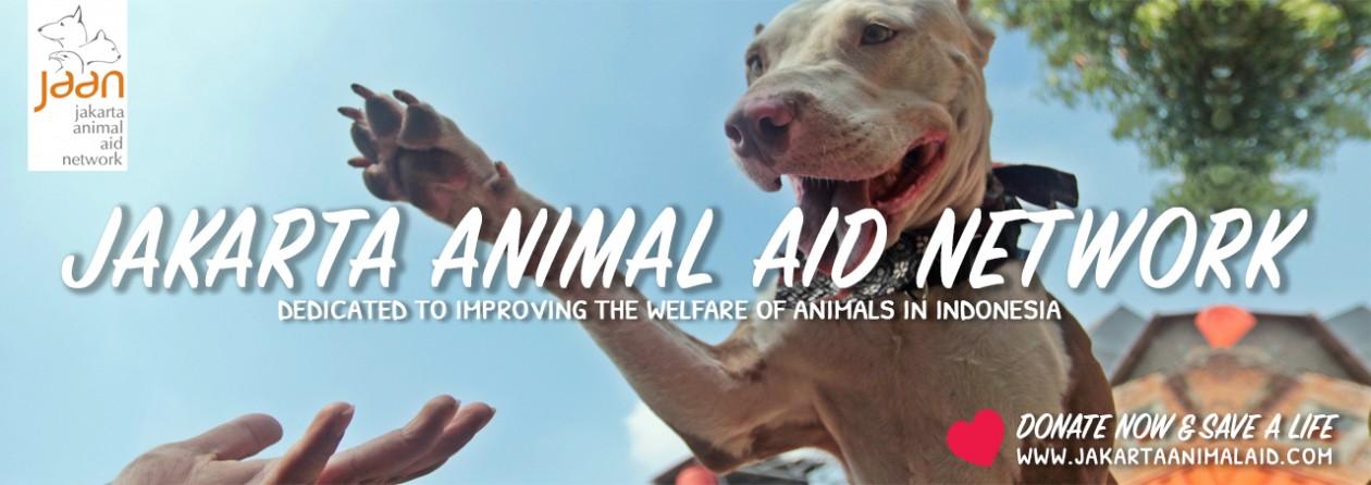 Jakarta Animal Aid Network