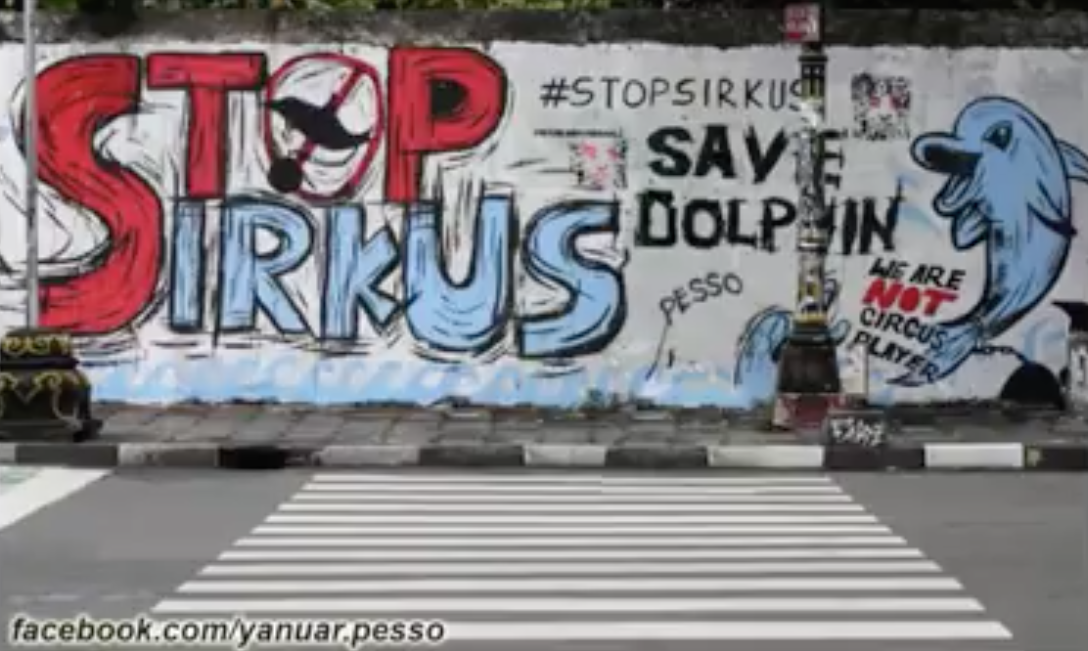 #STOPSIRKUSLUMBA