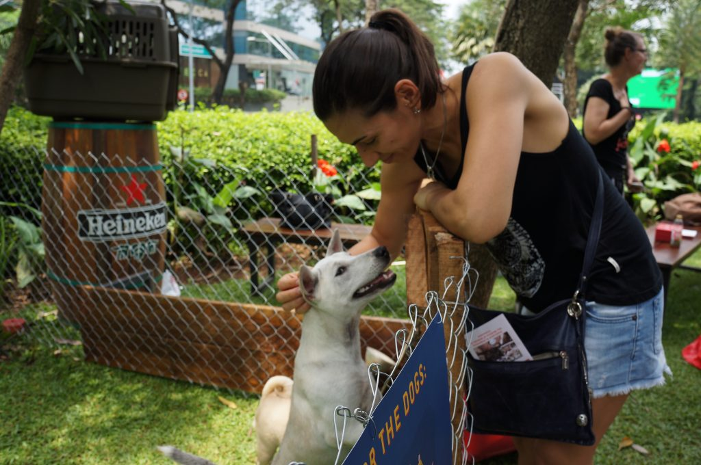 DOG ADOPTION DAY @ BEER GARDEN, SCBD.